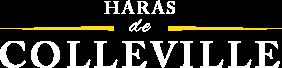 Haras de Colleville